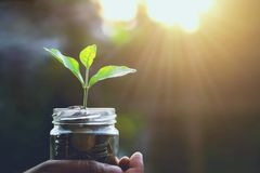 финансы концепции и учитывая сохраняя восход солнца денег стоковое фото rf