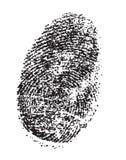 фингерпринт стоковое изображение