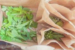 Финские одичалые травы собрали прямо от природы: Свежие крапивы и другие дикие растения в бумажной сумке Сырцовая еда здорова стоковое изображение rf