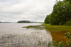 Финское озеро на пасмурный день Стоковые Изображения