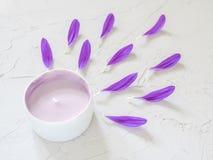 Фиолетовая косметическая сливк и фиолетовые лепестки цветка Стоковые Изображения RF