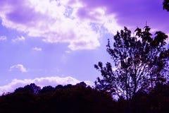 Фиолетовое небо света Стоковые Изображения RF
