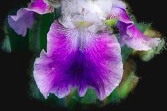 Фиолетовое цветение орхидеи - зацветая сад цветет в лете, дизайне щетки акварели стоковые изображения
