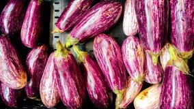 Фиолетовые баклажаны для подготовки обедающего стоковые изображения rf