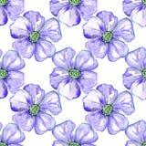 Фиолетовые цветки акварелью Стоковое фото RF