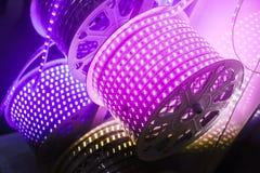 Фиолетовый пояс приведенный лампы Стоковое Изображение