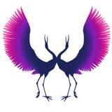 Фиолетов-розовый силуэт элегантной птицы Танец кранов Пестротканые цапли голубой фиолетовый аист изолировано иллюстрация вектора