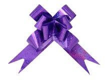 фиолет изолированный смычком Стоковое Фото