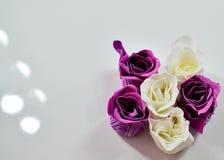 Фиолет и белые розы Стоковая Фотография