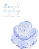 фиолет розы кристалла стоковые изображения rf