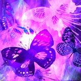 фиолет grunge бабочки Стоковая Фотография RF