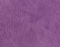 Фиолетовая кожаная текстура Стоковое Фото