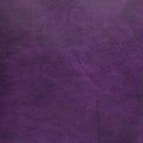 Фиолетовая кожа стоковая фотография rf