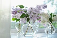 Фиолетовая сирень цветет пук в вазе Стоковые Изображения RF