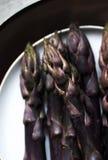 Фиолетовая спаржа стоковые фото