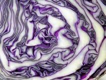 Фиолетовая текстура капусты Стоковое Изображение RF