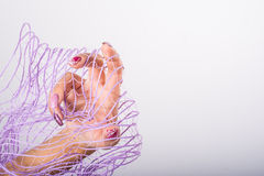 Фиолетовое искусство ногтя Стоковые Фотографии RF