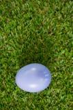 Фиолетовое пасхальное яйцо на траве Стоковое фото RF