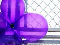 Фиолетовые воздушные шары партии Стоковая Фотография RF