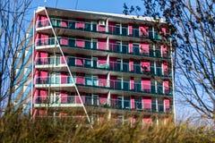 Фиолетовые квартиры блока Стоковое Изображение RF