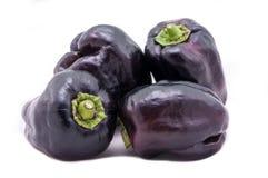 Фиолетовые паприки колокола Стоковые Изображения RF