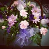 Фиолетовые розовые цветки стоковые изображения