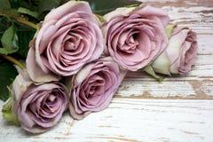 Фиолетовые розы на деревянной поверхности Стоковая Фотография