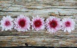 Фиолетовые цветки на винтажном деревянном столе Стоковое Изображение