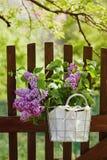 Фиолетовые цветки сирени стоковая фотография rf