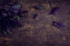 Фиолетовый базилик на деревянной предпосылке Стоковая Фотография RF