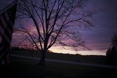 Фиолетовый и розовый восход солнца зимы Стоковые Изображения
