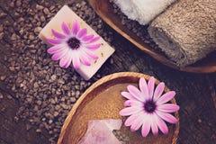 Фиолетовый комплект природы dayspa Стоковая Фотография