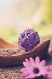 Фиолетовый комплект природы dayspa Стоковое фото RF