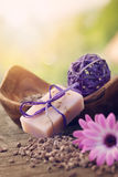 Фиолетовый комплект природы dayspa Стоковые Изображения