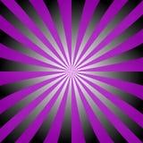Фиолетовый черный белый дизайн взрыва луча Стоковое Изображение