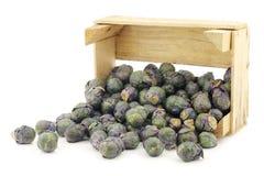 Фиолетовый brussel - ростки в деревянной клети Стоковая Фотография RF