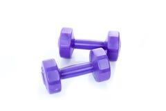 2 фиолетовых гантели Стоковое Изображение RF