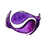2 фиолетовых рыбы акварели Художническая покрашенная иллюстрация - символ удачи Бесплатная Иллюстрация