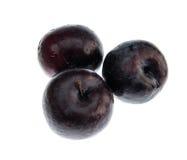 3 фиолетовых сливы Стоковые Фотографии RF