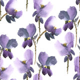 фиолет картины цветков Стоковое Фото