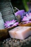 фиолет природы dayspa установленный стоковые фото