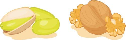 Фисташки и грецкие орехи изолированные на белизне Стоковые Изображения