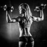 Фитнес с гантелями Стоковые Изображения RF
