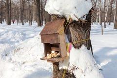 Фидеры птицы в парке Стоковое Фото