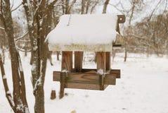 Фидеры птицы дом на дереве для птиц в зиме Стоковое Фото