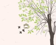 Фидеры птицы Стоковая Фотография
