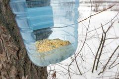Фидер от точки зрения птицы Стоковое Изображение RF