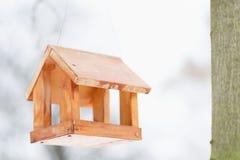 Фидер птицы в парке зимы Стоковая Фотография