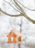 Фидер птицы в парке зимы Стоковые Изображения