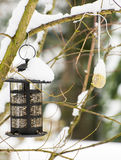 Фидер птицы и тучный шарик в снеге Стоковое фото RF